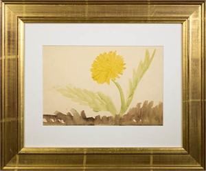 Yellow Flower, c. 1950