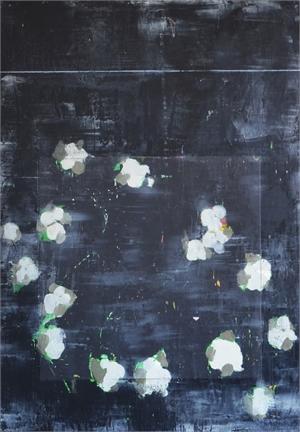 Midnight Cotton Series, 2016