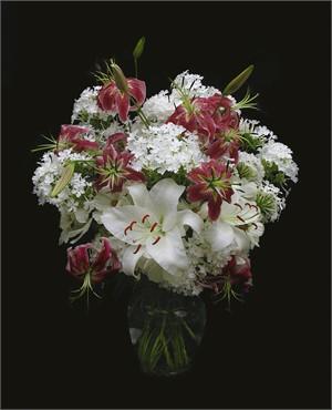 Lilies & Phlox