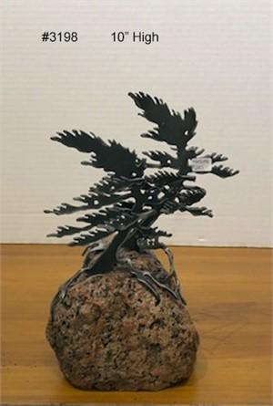 2-Windswept Pines  #3198