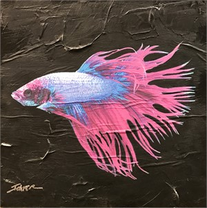 Blue and Pink Fish
