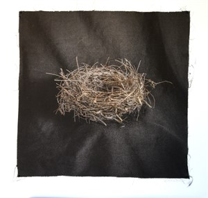 Untitled Nests #10 (1/20), 2018