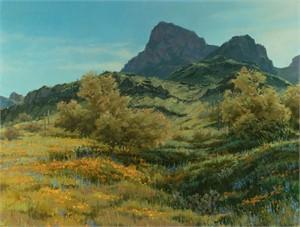 Picacho Spring