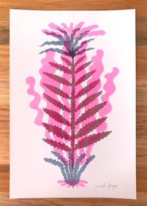 Plantas, 2020