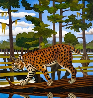 Bobcat, Caddo Lake by Billy Hassell
