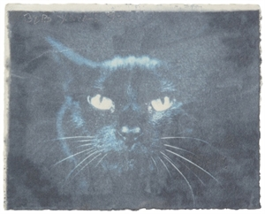 Black Cat, 1992