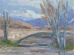 The Arno River On a Cold Day