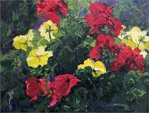 Petunias & Geraniums