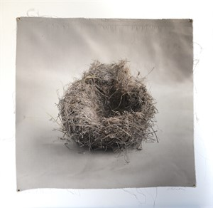 Untitled Nests #14 (1/20), 2018