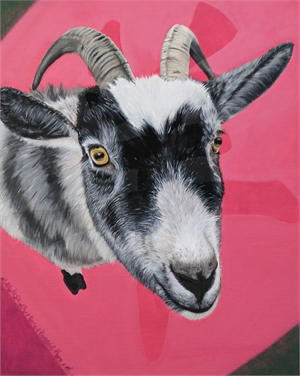 Year of the Goat, 2019