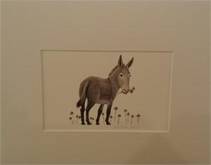 Donkey, 2019