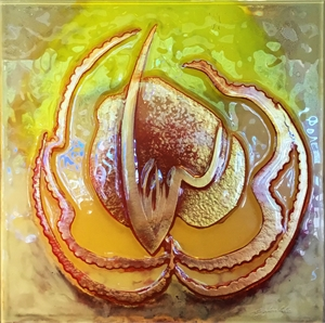 Sunlit Seed