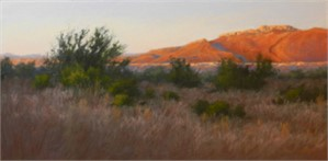 Mesquite View at Sun Up