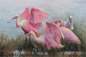 Spoonbill Flock by Sherry Egger