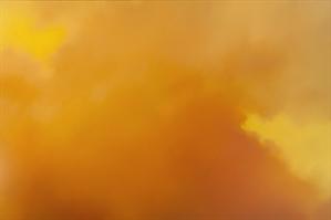 Yellow Sky III, 2008