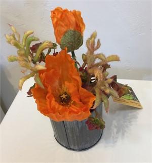 Modern Western #2 - Aloe, Sedum #19, 2019