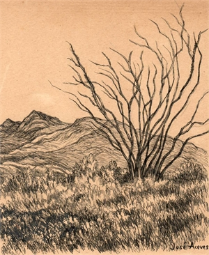 Untitled (Mountain and Ocotillo Landscape), c. 1950s