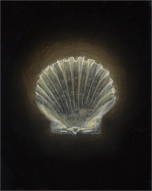 Shell 12 by Gregory Block