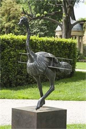 The Ostrich , 2009