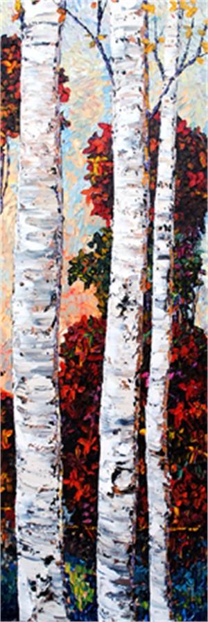 Birch 170757