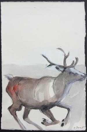 Animal Study 1: Elk Running, 2015