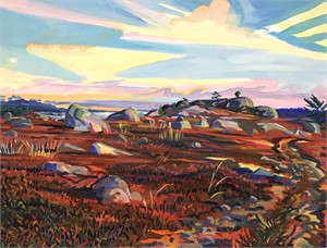 November Barrens, Sedgewick, Maine
