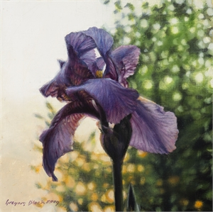 Iris 4 by Gregory Block