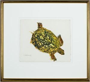 Three Legged Turtle, 1963