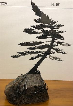 1-Windswept Pine #3207