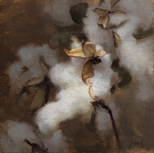 Cotton with Pods by Grace DeVito