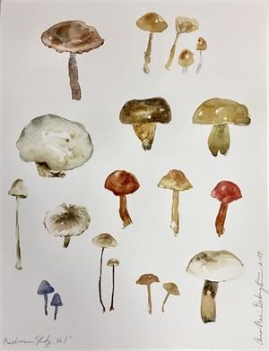 Mushroom Study, No. 1, 2019