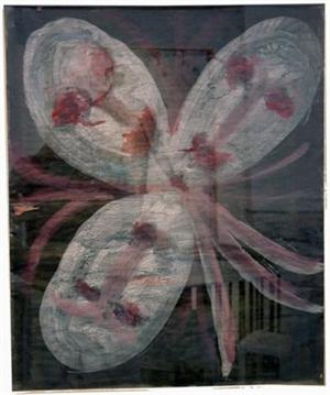 Flower/Faces, 1993