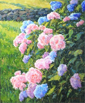 Hydrangeas, Pink and Blue