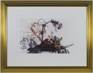 Feng Shui Floral, 2002
