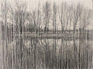 Phoria Landscape XII, 2018