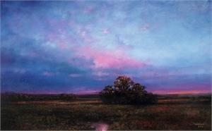 Twilight Fields