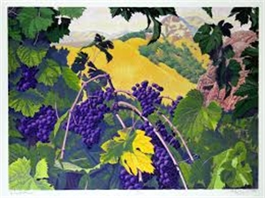 Vineyard (75/100)