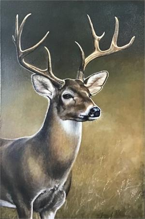 Buck II, 2019