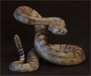 Rattlesnake (14/50)