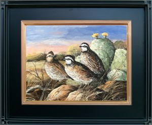 Cool Spring Morning (Bobwhite quail), 2017