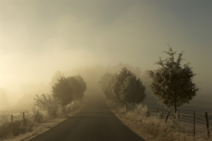 Ice Fog One, 2020