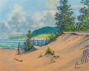 Dune Fences