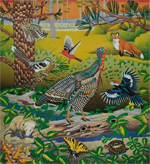 Wild Turkey, East Texas - TPWF (19/30), 2018