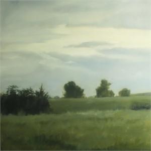 Rolling Meadow, 2019