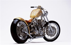 04011 Indian Larry 1028 Color, 2004