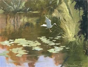 Ibis Pond, 2019