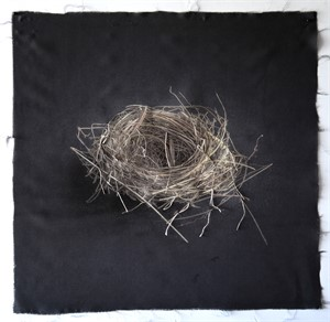 Untitled Nests #16 (1/20), 2018