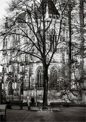 aachen tree II, 2017