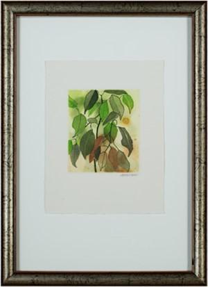 Plant Leaves, 1983