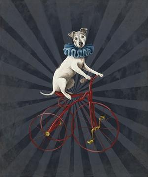 Circus Dog by Lisa Humphreys